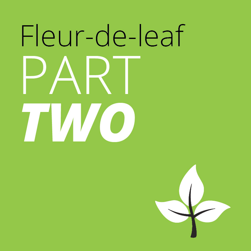 fleur de leaf